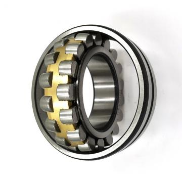 Hot Sale SKF Chrome Steel Snl 516 Bearing with Housing