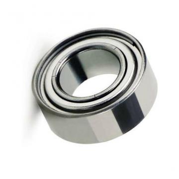 Needl Rolle Bearings HK2010, HK2012, HK2014, HK2016, HK2018, HK2020, HK2025, HK2030, HK2210, HK2212, HK2216, HK2220