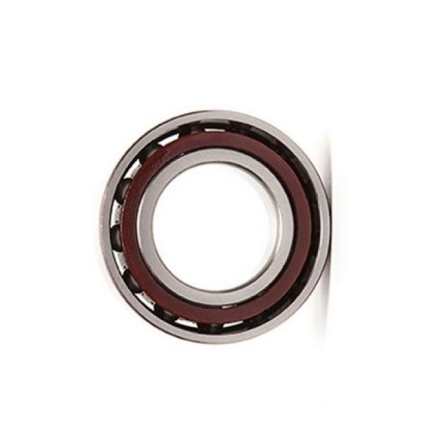 Metric Miniature Flanged Deep Groove Ball Bearing F623zz #1 image