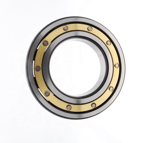 Ultra Thin Wall Bearings 6702zz 2RS Robot Vacuum Cleaner Bearing (6002, 6003, 6202, 6203) #1 image