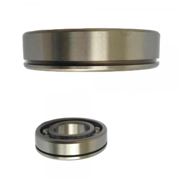 Full Complement Roller Needle Roller Bearings #1 image